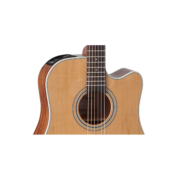 gd20ce-ns-soundhole